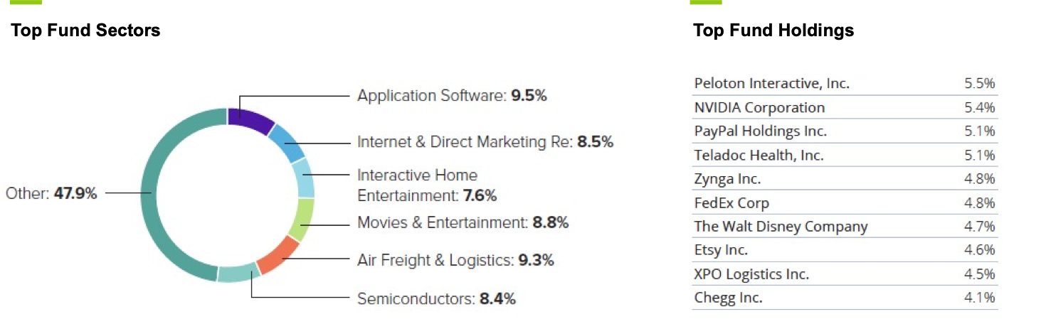 Emles @Home ETF holdings and sectors 2Q21
